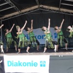 Diakoniefest 2012